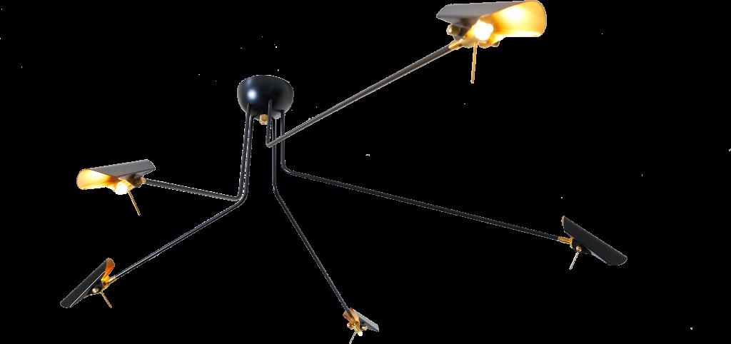suspension-bird